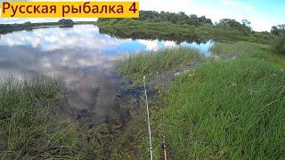 Русская рыбалка 4 Мир труд май на рыбалку выезжай РР4 RF4 Рыбалка в мае Весенняя рыбалка ВПК