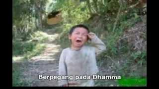 Lagu Buddhis - Tekad Siswa Sang Buddha