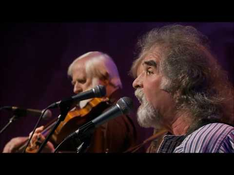 Ringsend Rose - The Dubliners (50 Years Celebration Concert)