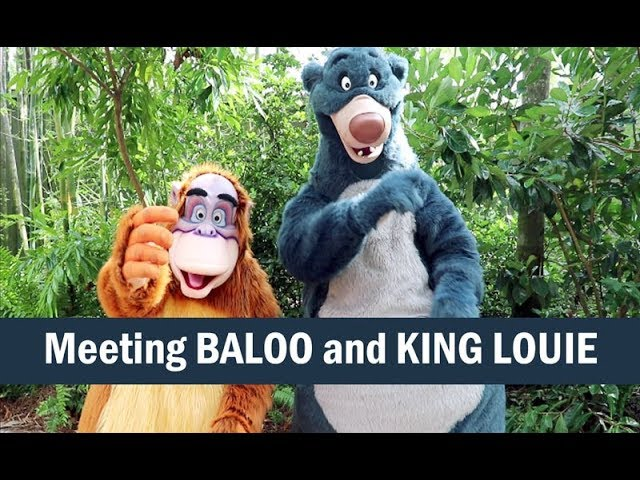 Meeting Baloo and King Louie at Disney's Animal Kingdom 20th Anniversary