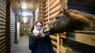Репортаж о конном спорте в Оренбурге<