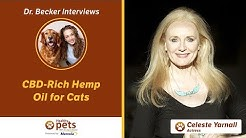 Dr. Becker Interviews Dr. Yarnall About CBD-Rich Hemp Oil for Cats