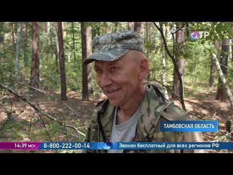 Охотник до грибов Дмитрий Тихомиров - о том, как одеться в лес, какие грибы не стоит собирать и куда