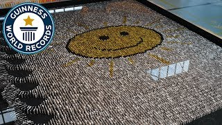 Most dominoes toppled underwater - Guinness World Records