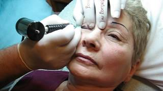 Tatuaj ochi contur pers in varsta http://www.machiajtatuaj.ro