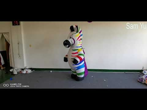 Advertising Inflatables Zebra Costume For Stage Decoration