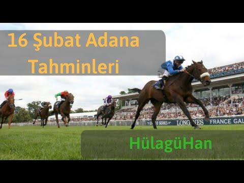 16 Şubat Adana Altılı At Yarışı Tahminleri Ve Altılı Için Bankoları - TJK