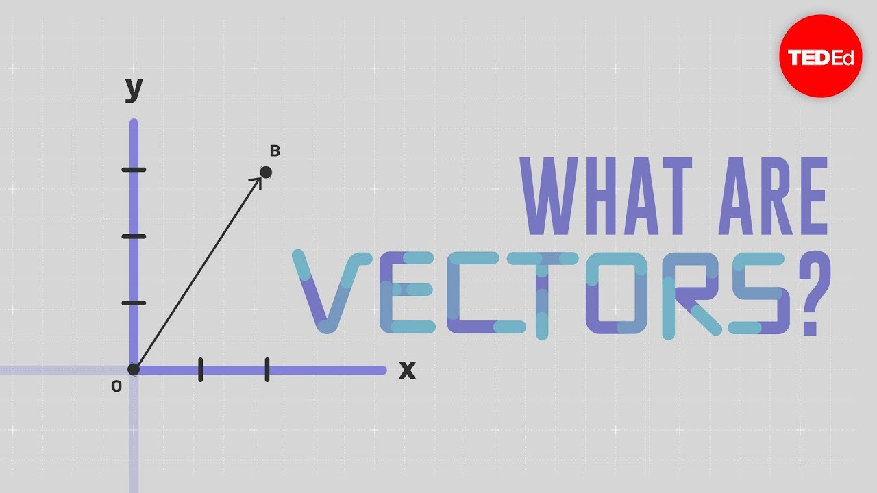 What is a vector  David Huynh  YouTube