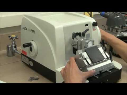 Microtome Sectioning Tutorial