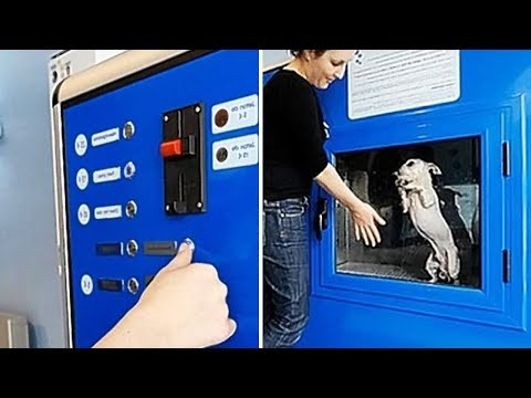 The Most Unusual Vending Machines That Will Blow Your Mind