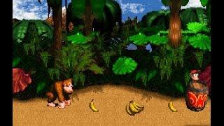 Play Donkey Kong Country 4 The Kongs Return : demo2