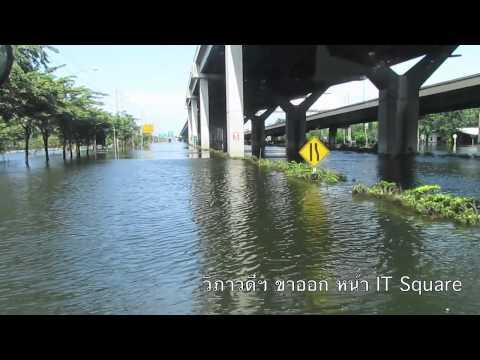 Flood Report 8 November 2011