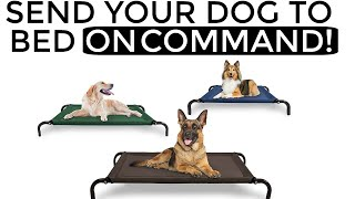 How to teach your dog to go to their bed ON COMMAND The easiest dog training process