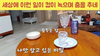 # 한파에 아이스 아메리카노 한잔 춤추는 얼음컵