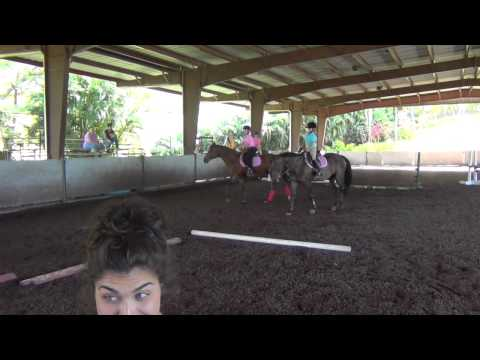 Musical Stalls - Horseback Riding Games
