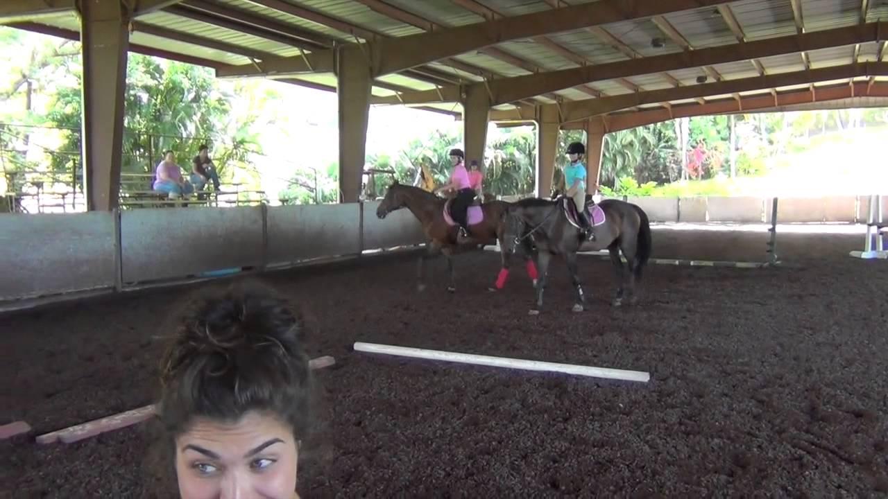 Musical Stalls Horseback Riding Games Youtube