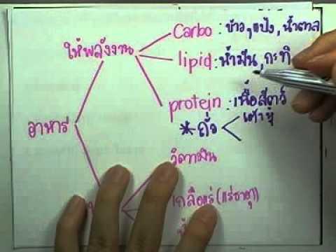 ข้อสอบเข้าเตรียมฯ วิชาวิทย์ ,ปี2534 ,ตอน01