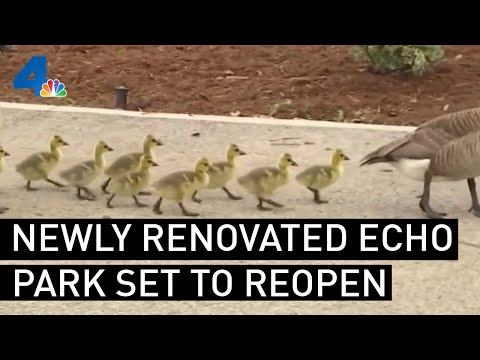 Newly Renovated Echo Park Lake Set to Reopen  | NBCLA