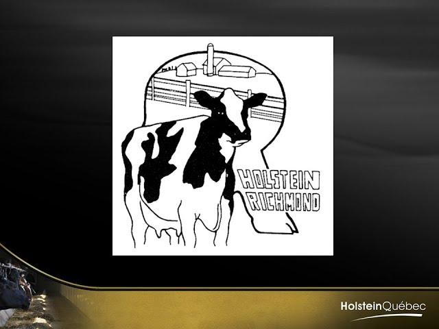 Club Holstein de Richmond Banquet 2020