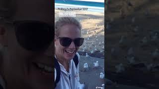 Meine Weltreise - EXKURS: die ZEITREISE in meiner WELTREISE: 2x 8. September 2017