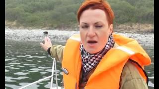 видео Ловля в лесу диктант (про лес диктанты для школы)