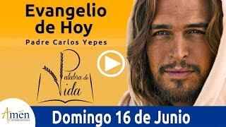 Evangelio de Hoy Domingo 16 de Junio de 2019 l Padre Carlos Yepes