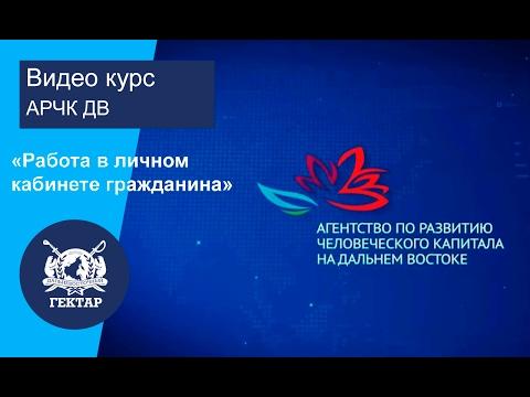 Видеокурс Работа в личном кабинете гражданина   ФИС 'НадальнийВосток РФ'