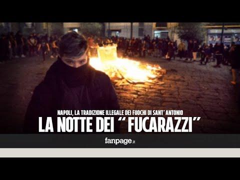 Fuochi di Sant'Antonio, a Napoli sfida tra baby-gang scatenate: bruciamo gli alberi, ecco chi vince