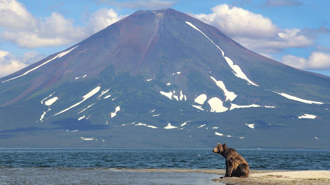 Камчатка: почему она обязательный пункт для ежегодных путешествий