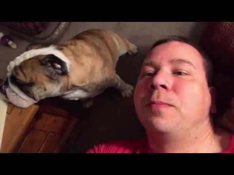 reuben-the-bulldog-thursday-night-part-1