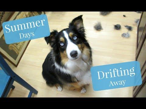 Summer Days Drifting Away - Vlog 16 (2017)