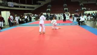 VIII Олимпиада боевых искусств