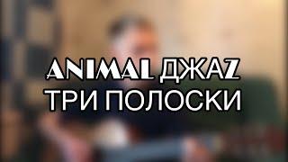 ANIMAL ДЖАZ - ТРИ ПОЛОСКИ кавер на гитаре