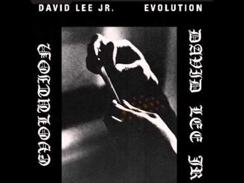 David Lee Jr (Usa, 1974) - Evolution