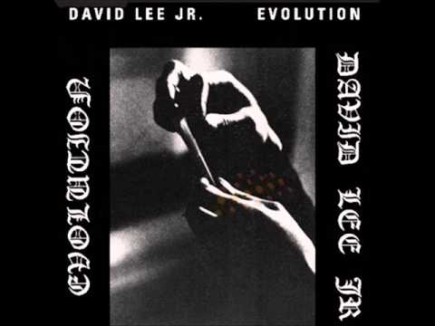 David Lee Jr (Usa, 1974) - Evolution