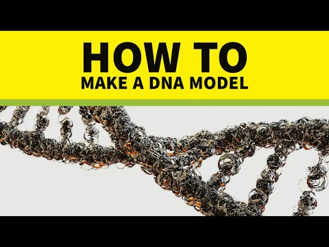 How to make DNA Model in easy way✔
