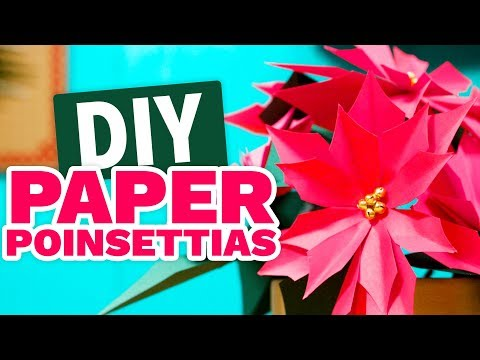 DIY Paper Poinsettias - HGTV Handmade