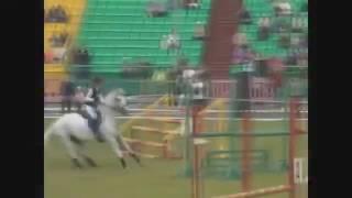 Риск конного спорта...1