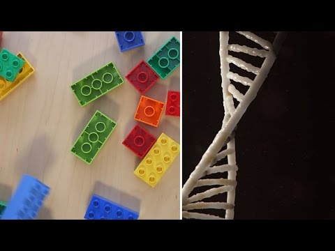 Synthetic biology, explained