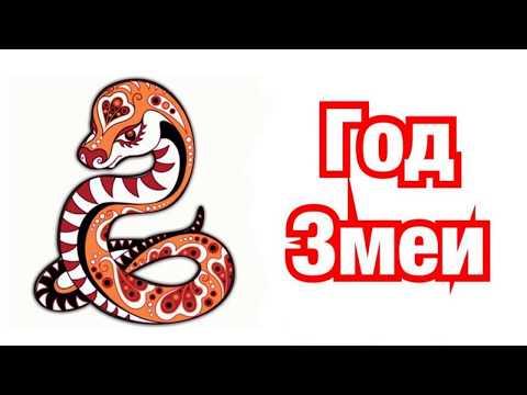 Характеристика и описание знака-Змея. Совместимость знаков