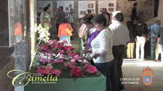 IX Certame e Exposición da Camelia