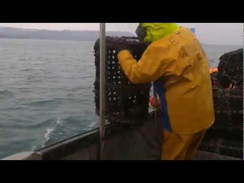 uk commercial fishing  small boat potting
