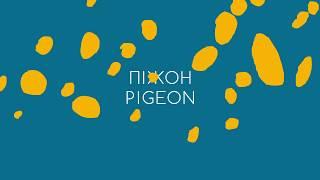 Інша мова - Інший погляд , pigeon / піжон