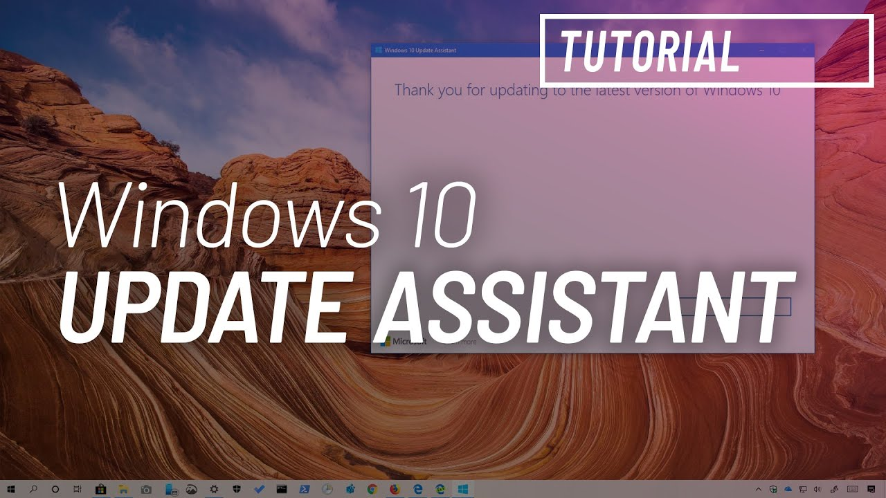 Windows 10 version 1903 download using 'Update Assistant' • Pureinfotech
