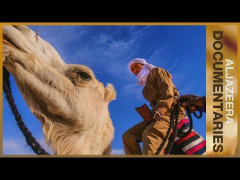 Al Jazeera World - Camels in the Outback
