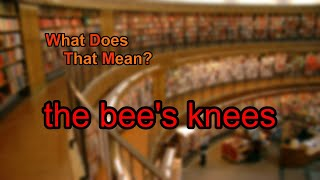 What does the bee's knees mean?