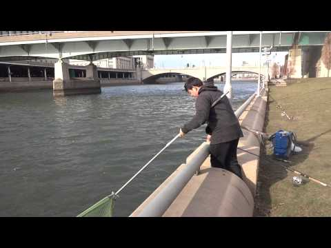 Catfishing Under Extreme Weather -- Part 3: Landing The Fish (Philadelphia, PA)