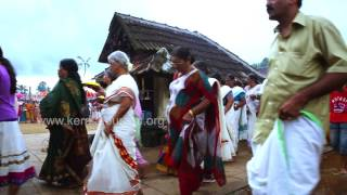 Aranmula Temple Procession