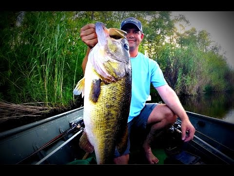 Understanding Big Bass - How to Catch a Trophy Largemouth