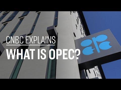 What is OPEC? CNBC Explains